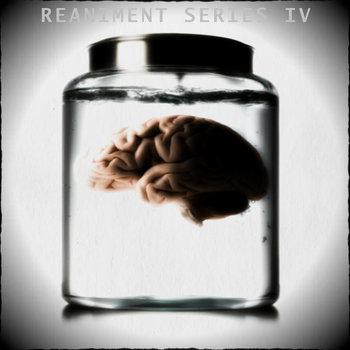 Reaniment Series IV cover art