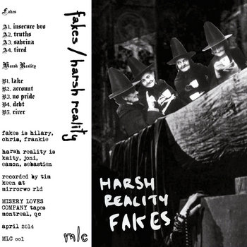 Fakes / Harsh Reality MLC Split cover art