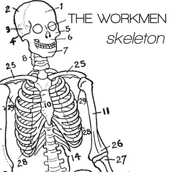 Skeleton cover art