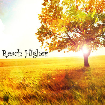 Reach Higher cover art
