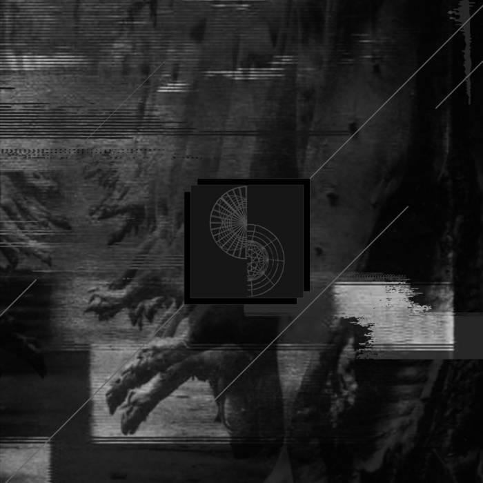 """Negative Standards / Whitehorse split 12"""" cover art"""