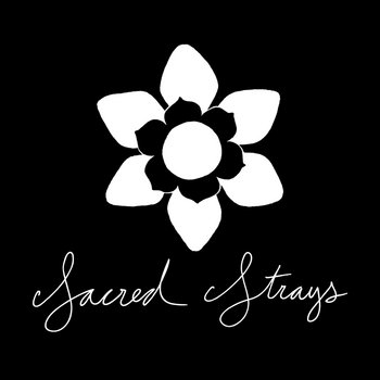 Sacred Strays Pre-release cover art