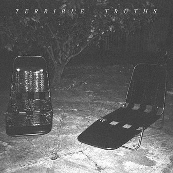 "Terrible Truths 7"" (2011) cover art"