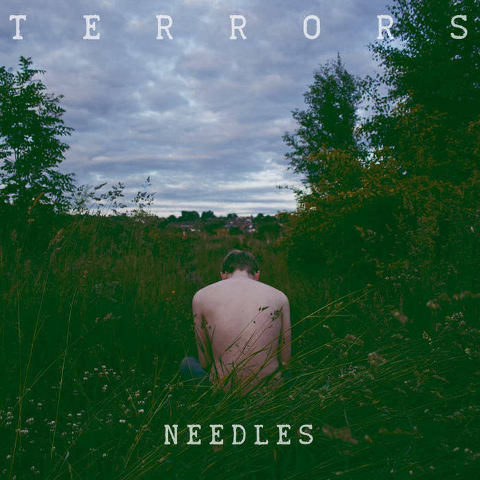 Needles cover art