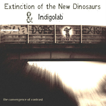 The Convergence of Contrast EP cover art