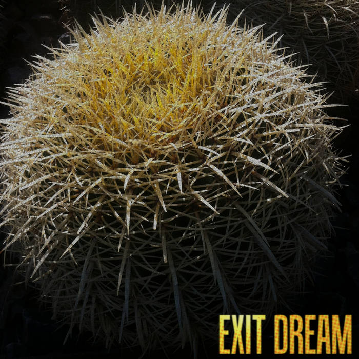 Exit dream cover art