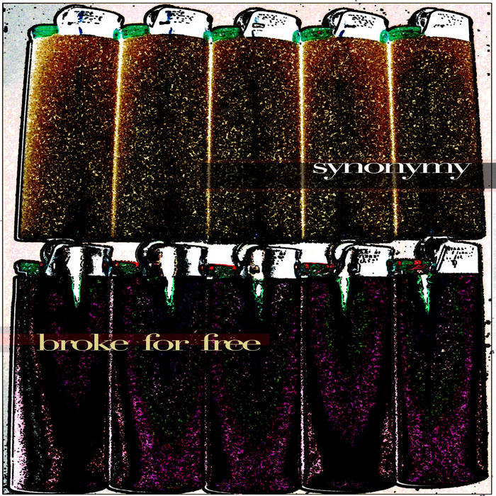 Synonymy cover art