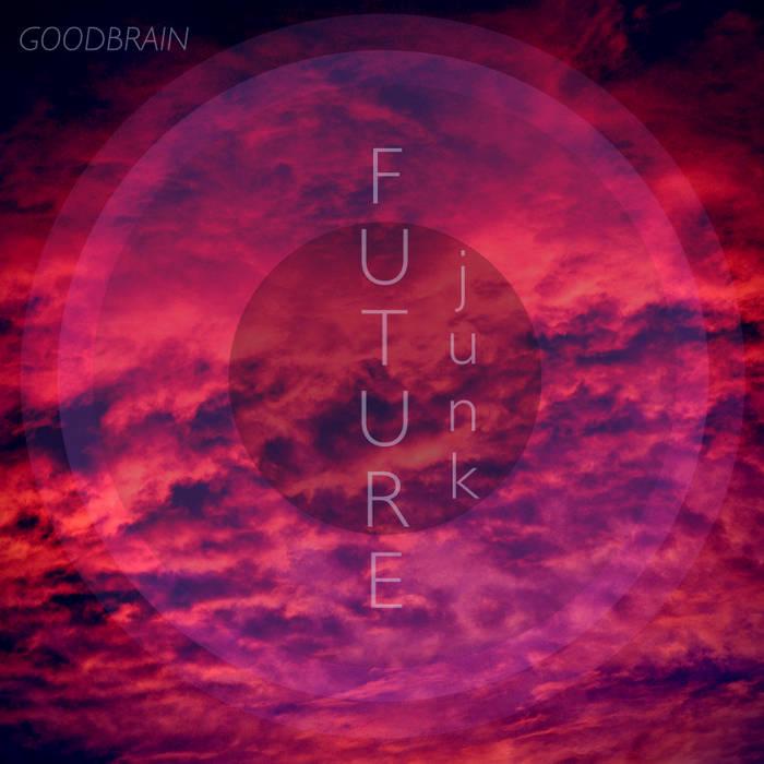 Future Junk cover art