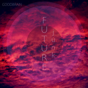 Future Junk cover art