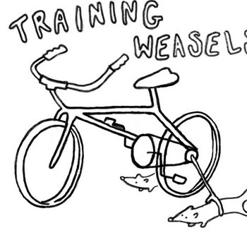 Training Weasels Demo cover art
