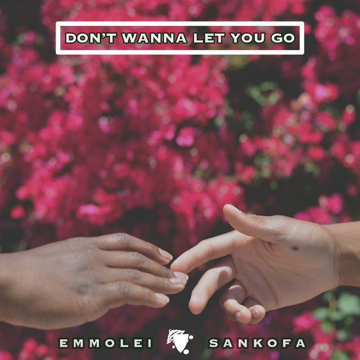 Don't Wanna Let You Go cover art