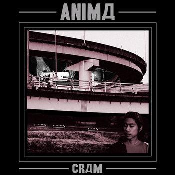 ANIMД cover art
