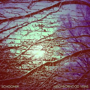 Neighborhood Veins cover art
