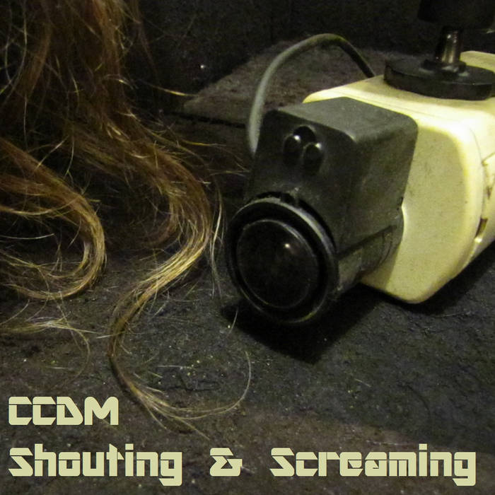 Shouting & Screaming cover art