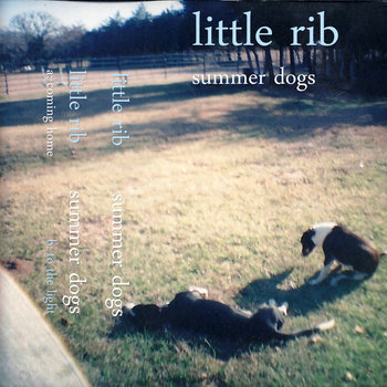 summer dogs cover art