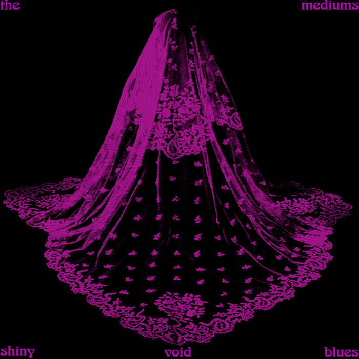Shiny Void Blues cover art