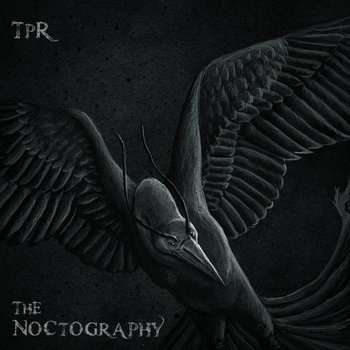 The Noctography cover art