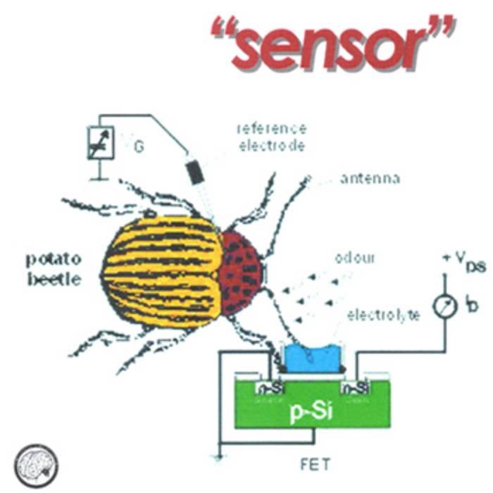 Sensor WPR009 cover art