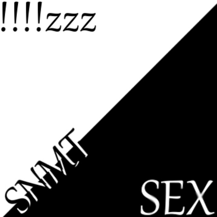 !!!!zzz/SEX cover art