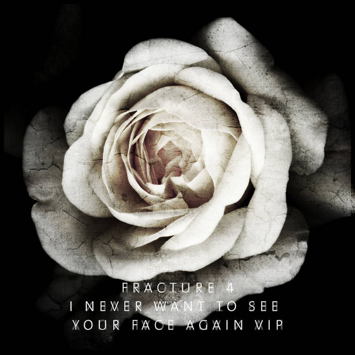 I Never Want To See Your Face Again VIP cover art