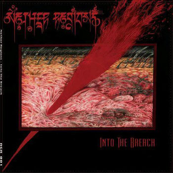 Into the Breach by Nether Regions cover art