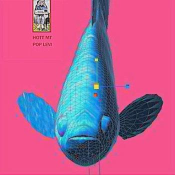HOTT MT / POP LEVI cover art