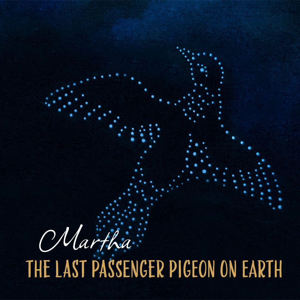 Martha, The Last Passenger Pigeon on Earth by Beggar's Ride