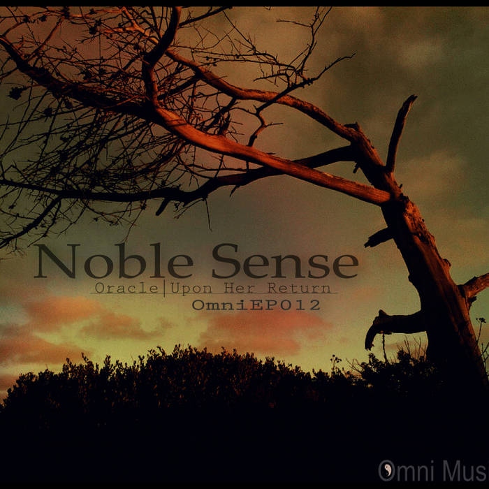 Noble Sense - Oracle EP cover art