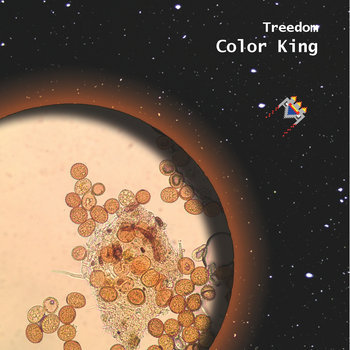 Color King cover art
