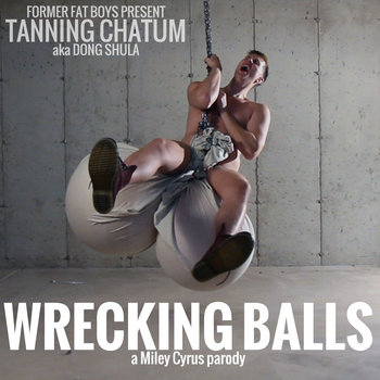 Wrecked My Balls (A Parody of Wrecking Ball by Miley Cyrus) cover art