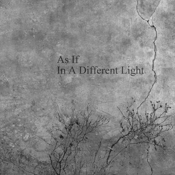 In A Different Light cover art