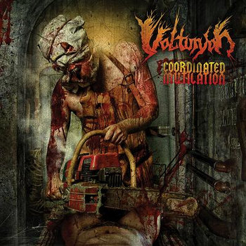 VULTURYON - Coordinated Mutilation cover art