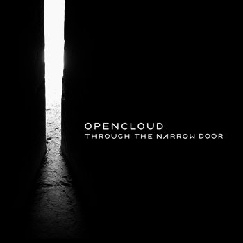 Through The Narrow Door cover art