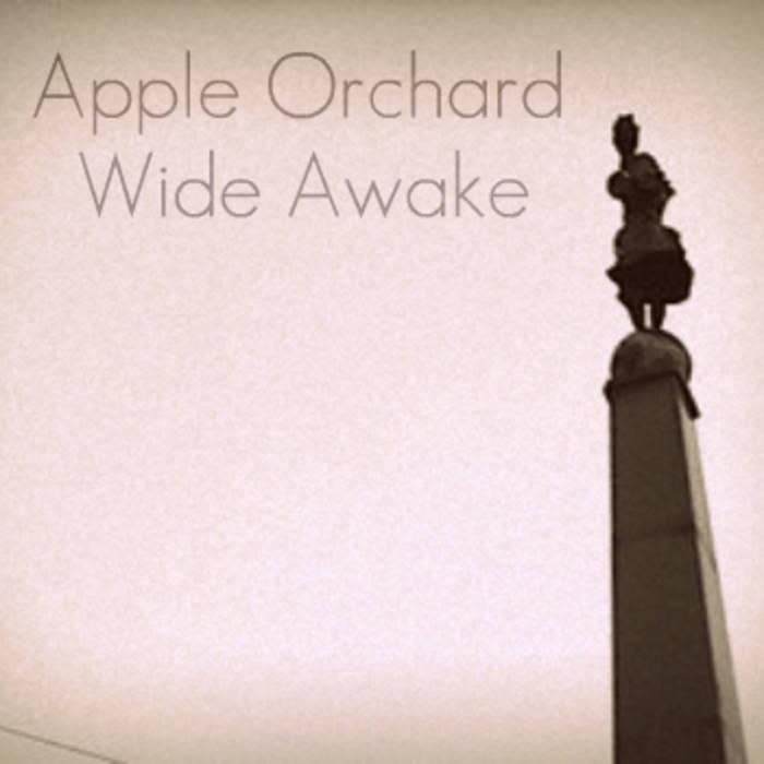 Wide Awake cover art