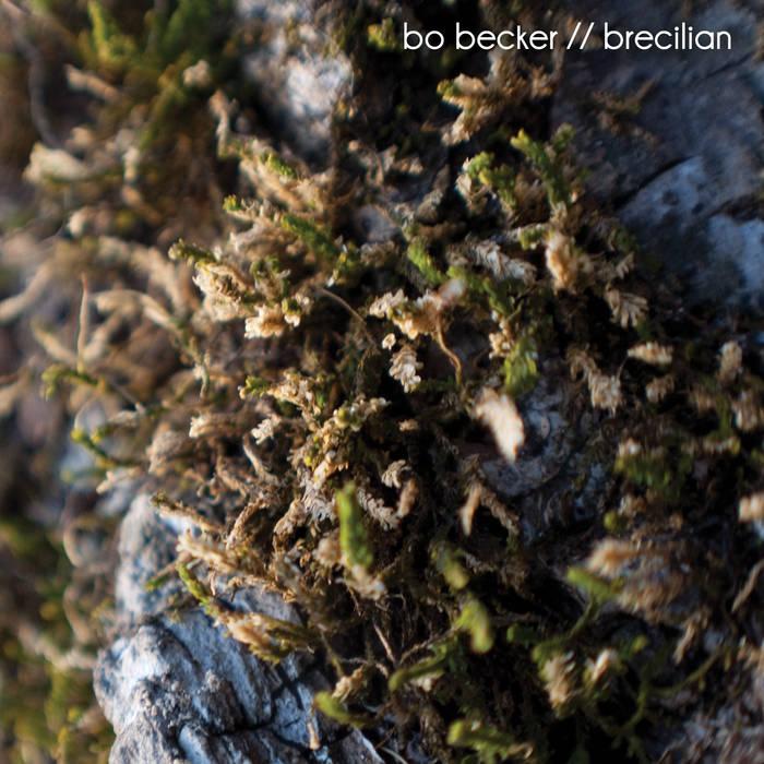 Brecilian cover art