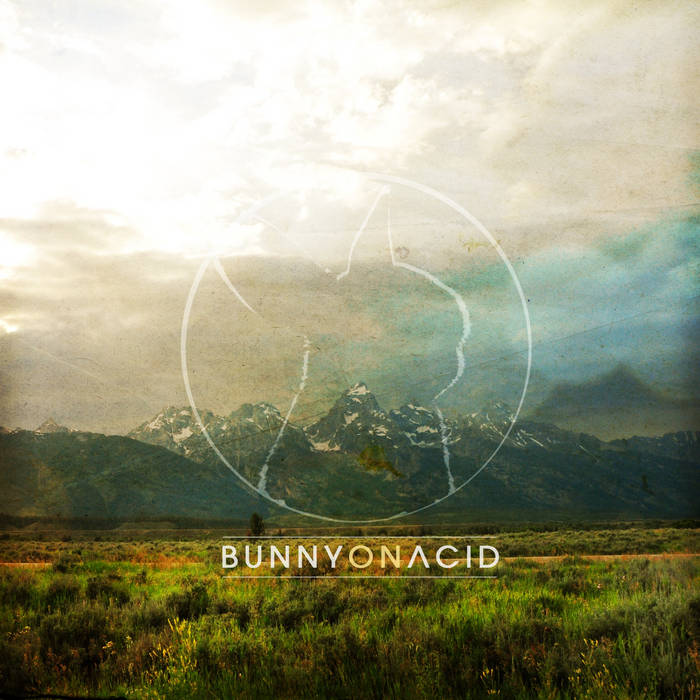 Bunny On Acid cover art