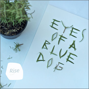 Rise cover art