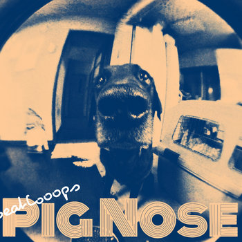PIG NOSE cover art