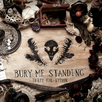 Bury Me Standing cover art