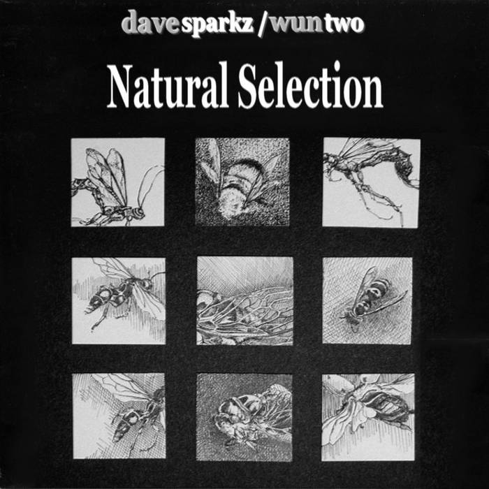 Natural Selection cover art