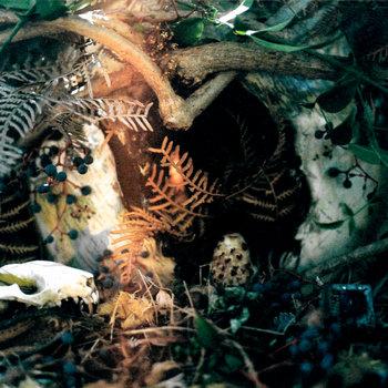 NEOCAMBRIAN cover art
