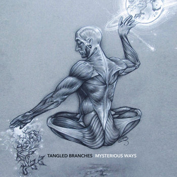 TANGLED BRANCHES - MYSTERIOUS WAYS cover art