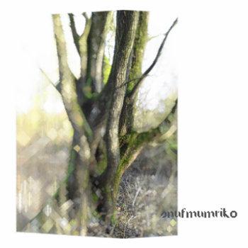snufmumriko cover art