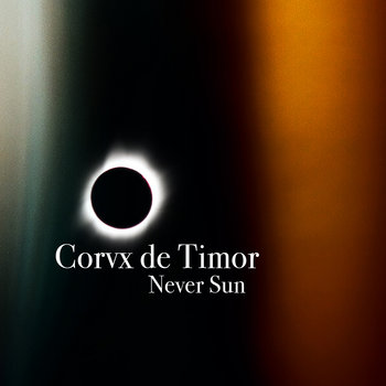 Never Sun cover art