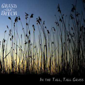 In the Tall, Tall Grass cover art