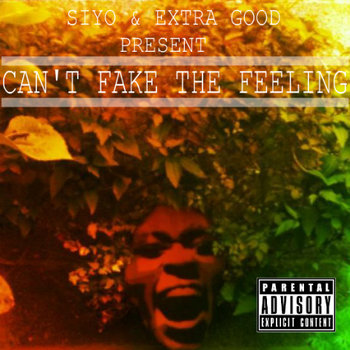 Can't Fake The Feeling cover art