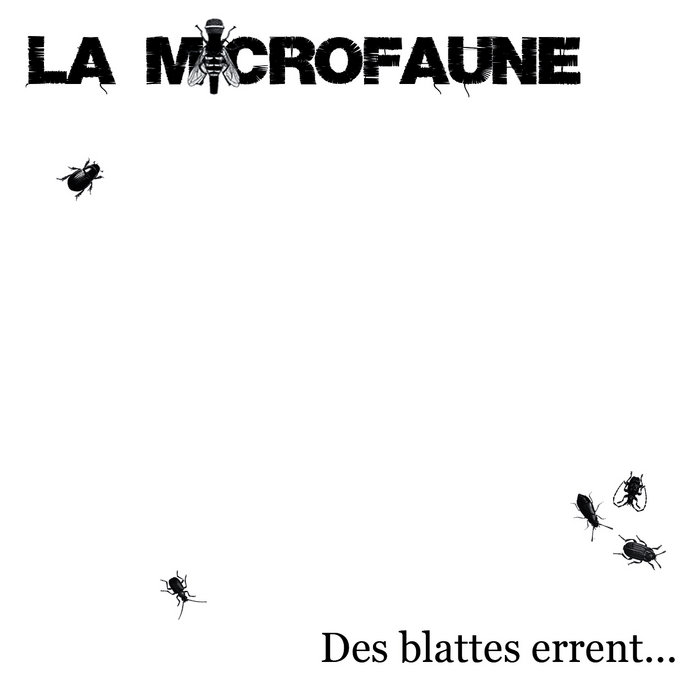 Des blattes errent... cover art