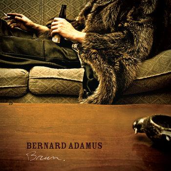 Brun cover art