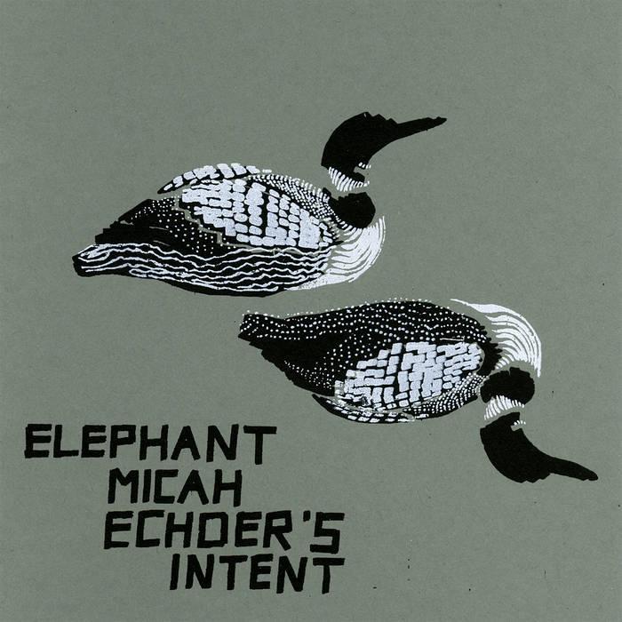 Echoer's Intent cover art