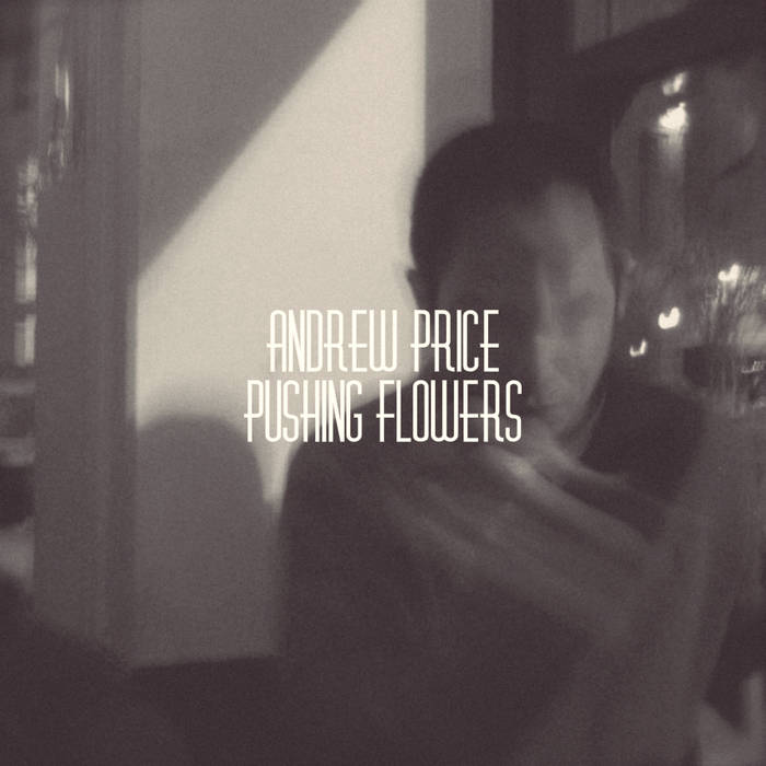 Pushing Flowers cover art